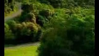 getlinkyoutube.com-scary car video