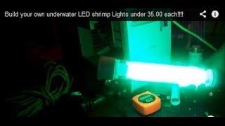 getlinkyoutube.com-Build your own underwater LED shrimp Lights under 35.00 each!!!!
