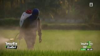getlinkyoutube.com-ชี้กลุ่มทุนเบื้องหลังขึ้นทะเบียนสารพิษ | 22-02-60 | ไทยรัฐนิวส์โชว์