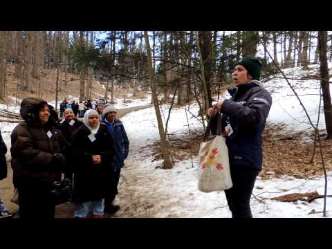 India Rainbow school from mississauga travel To Maple syrup factory 2.
