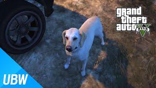 getlinkyoutube.com-GTA 5 애완동물 키우기 모드 - GTA 5 Mod Showcase: Animal Ark Shelter Mod