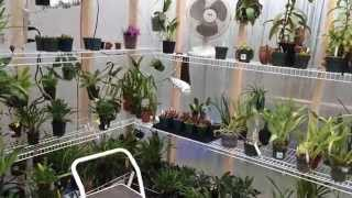 getlinkyoutube.com-Greenhouse Build: My New DIY 10 x 16 Greenhouse Tour