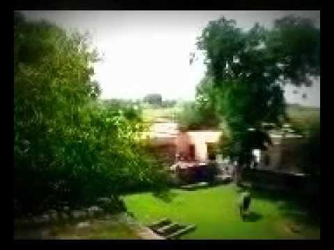 My Sweet Village Gahi Guffanwala (Wanhar) Chakwal 001.mp4
