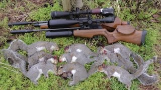 getlinkyoutube.com-Pest Control with Air Rifles - Squirrel Shooting - The Plank pt 2