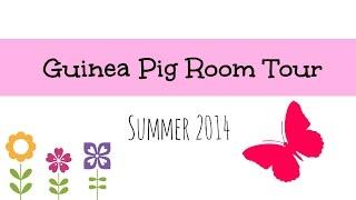 getlinkyoutube.com-Guinea Pig Room Tour | Summer 2014 ☀