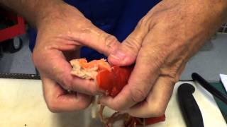 How to Prep and Cook Pre Cooked Lobster