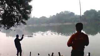 getlinkyoutube.com-Mancing danau sunter