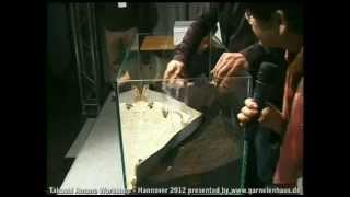 getlinkyoutube.com-Takashi Amano Workshop - 2012 Hannover - Part II