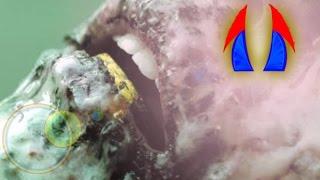 getlinkyoutube.com-ตำนาน เงินปากผี ของดี จาก ปากศพ | ดาบสองคม