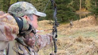 SHOT OF THE WEEK - Bowhunting Sitka Blacktails