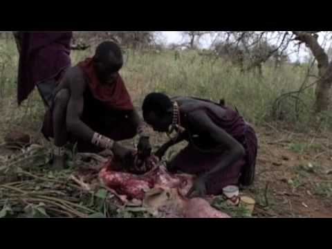 The Cut Part 2 female Genital Mutilation