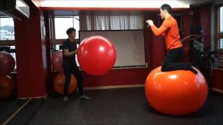 wcs 101 - Gym Ball exercise