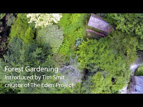 Living With The Land | Part 1 | Forest Gardening