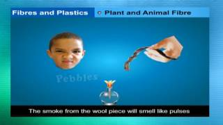 Synthetic fibres and plastics | Class 8th CBSE Chemistry | NCERT | CBSE Syllabus | Animated Video