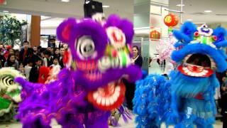 getlinkyoutube.com-Party Rock Anthem Lion Dance Performance 2