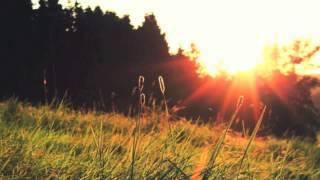 getlinkyoutube.com-DJ AFX Summer Sunset Mix: Volume 1