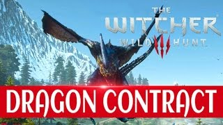 The Witcher 3 - DRAGON Contract