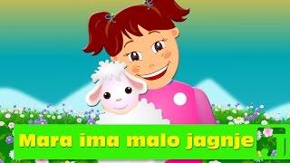 Mara ima malo jagnje | Dečije pesme | Marry Had A Little Lamb | Jaccoled