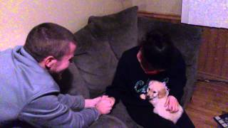 getlinkyoutube.com-Surprising my wife with a puppy