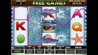 getlinkyoutube.com-Dolphin Reef Slot - Mega Big Win Bonus at D-Best Casino