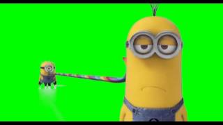 getlinkyoutube.com-Minions - Despicable Me - Green Screen 04 (1080p HD)