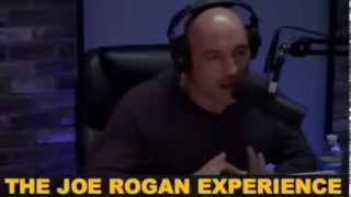 getlinkyoutube.com-Joe Rogan and Ian McCall talk about Mirko Cro Cop
