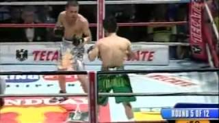 Carlos Tamara vs Brian Viloria Full Fight