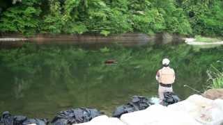 getlinkyoutube.com-2013/6/1 渓流ルアーフィッシング イワナ、ヤマメ釣り! 【フルHD】