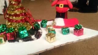 CHRISTMAS UPDO FOR GIC ATHENS GA