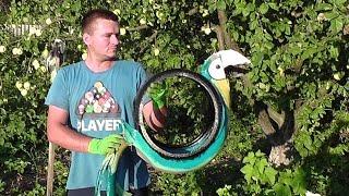 ПОПУГАЙ из автомобильной покрышки / Как сделать попугая из покрышки