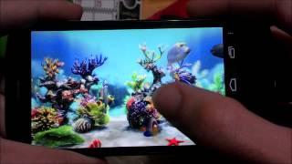 getlinkyoutube.com-IMPRESIONANTE fondo animado ACUARIO 3D - SUPER REALISTA !!
