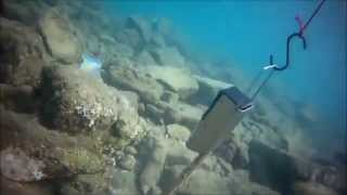 getlinkyoutube.com-El mejor gusano mara pescar lubinas.bobbit