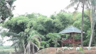 getlinkyoutube.com-Sekolah Putri Darul Istiqamah
