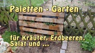 getlinkyoutube.com-Paletten Garten - Vertical Gardening