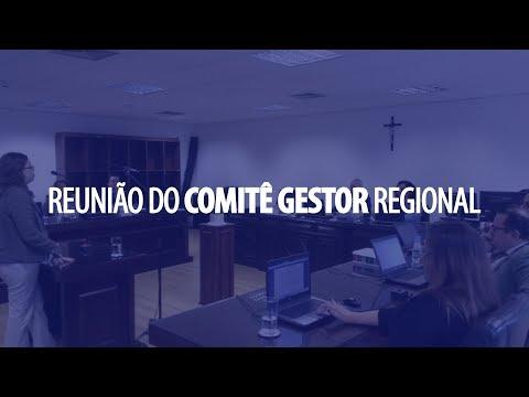 Reunião do Comitê Gestor Regional