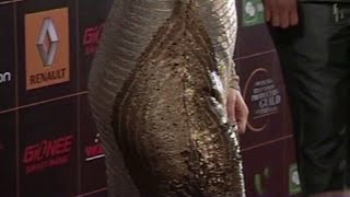 getlinkyoutube.com-Kareena Kapoor Hot & Sexy Butts @ Star Guild Awards 2014
