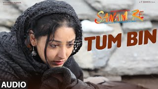 TUM BIN Full Song (AUDIO) | SANAM RE | Pulkit Samrat, Yami Gautam, Divya Khosla Kumar