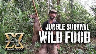 getlinkyoutube.com-Living off the Jungle, Wild Foods Tour
