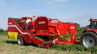 Grimme SE 150-60 trailed potato harvester