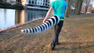 Tail test
