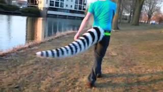 getlinkyoutube.com-Tail test