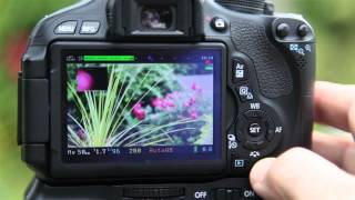 getlinkyoutube.com-Canon T3i 600D best movie focus effect using magic lantern