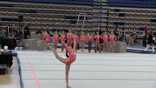 getlinkyoutube.com-Annie the Gymnast   Level 7 Gymnastics Meet 8   Acroanna