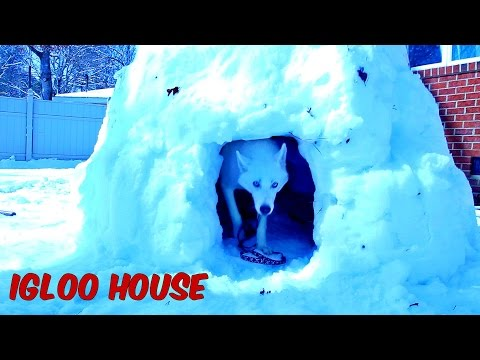 How to Make Igloo House