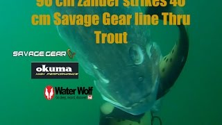 96 cm zander caught on  40 cm Line Thru Trout - amazing  underwater strike by Water Wolf camera