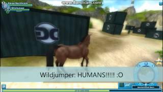 getlinkyoutube.com-Star Stable- Wildjumper's Story!