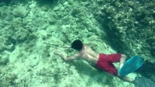 getlinkyoutube.com-คนเบิกทาง : 'ชนเผ่าซามา' มนุษย์ที่ดำน้ำตัวเปล่าได้นานที่สุดในโลก  8 ก.ย. 57  (2/4)