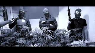 Revolution Urbaine - La Jungle