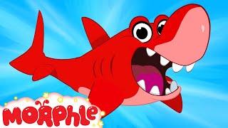 getlinkyoutube.com-My Pet Shark (+ Morphle compilation) My Magic Pet Morphle Episode #29
