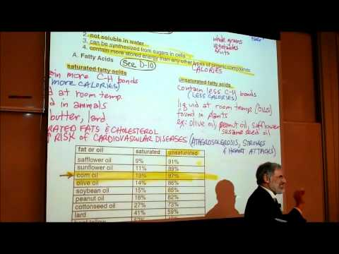 BIOLOGICAL CHEMISTRISTY; PART 2; POLYSACCHARIDES & FATTY ACIDS by Professor Fink